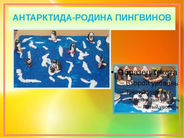 АНТАРКТИДА-РОДИНА ПИНГВИНОВ