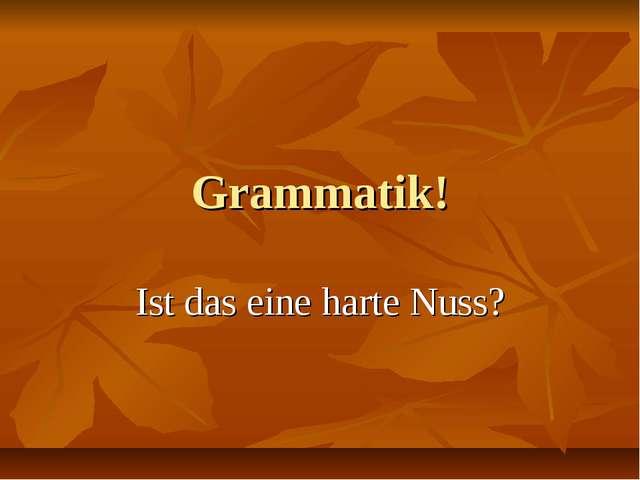 Grammatik! Ist das eine harte Nuss?