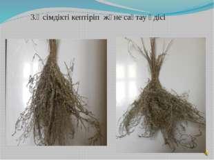 3.Өсімдікті кептіріп және сақтау әдісі