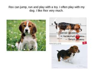 Rex can jump, run and play with a toy. I often play with my dog. I like Rex v