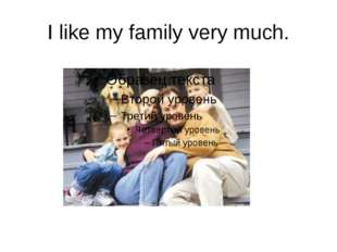 I like my family very much.