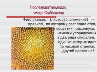 Последовательность чисел Фибоначчи Филлотаксис (листорасположение) — правило,