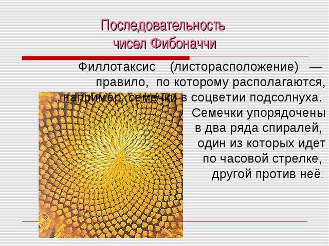 Последовательность чисел Фибоначчи Филлотаксис (листорасположение) — правило,...