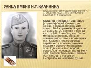 Улица имени Героя Советского Союза Н. Т. Моисеева (1925-1944) находится в Баи