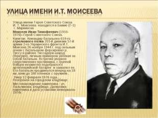 Улица имени Героя Советского Союза И. Т. Моисеева находится в Баиме (Г-1) г.