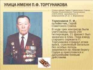 Улица имени Героя Советского Союза Петра Филипповича Торгунакова (1924-2003)