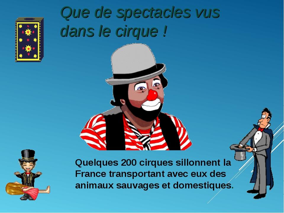 Quelques 200 cirques sillonnent la France transportant avec eux des animaux s...