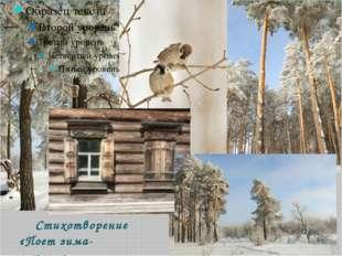 Стихотворение «Поет зима-аукает»