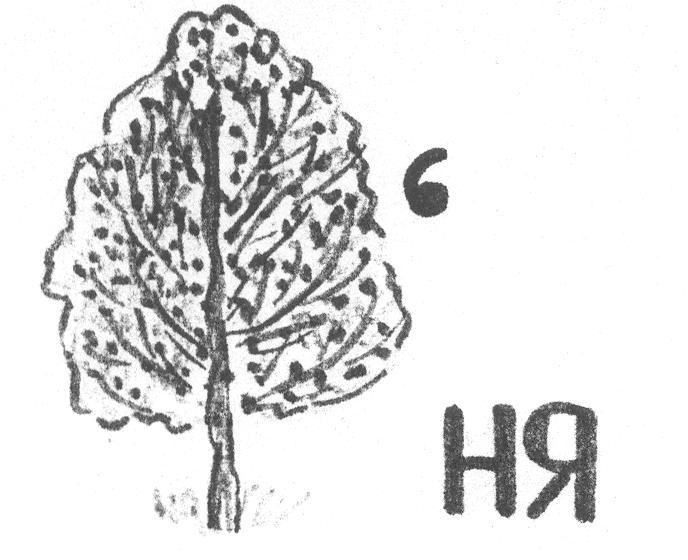 hello_html_m4394ccb3.jpg