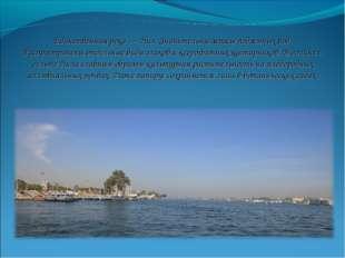Единственная река — Нил. Значительны запасы подземных вод. Распространены отд