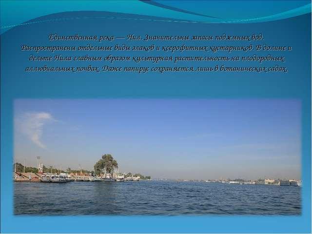Единственная река — Нил. Значительны запасы подземных вод. Распространены отд...