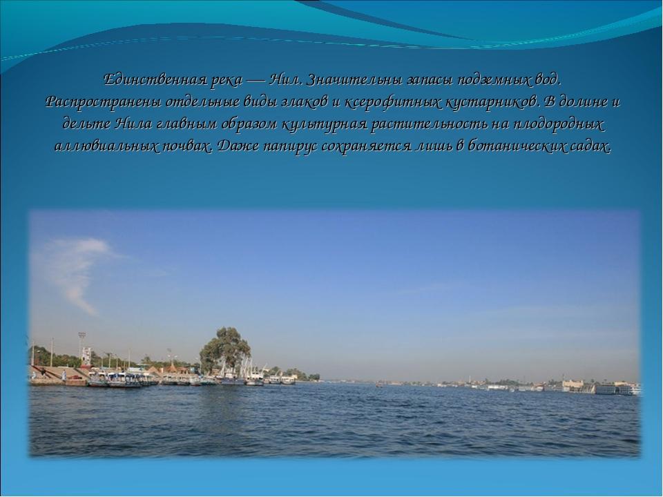 Нил река презентация