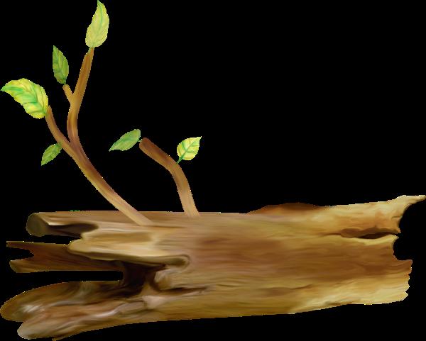 Рисунок поваленного дерева