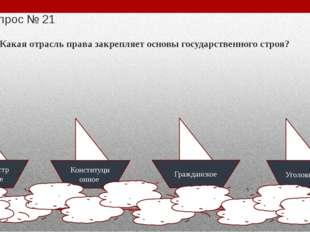 Вопрос № 24 Право избирать и быть избранным в федеральные, региональные орган