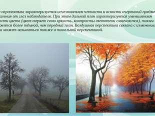 Воздушная перспектива характеризуется исчезновением четкости и ясности очерта