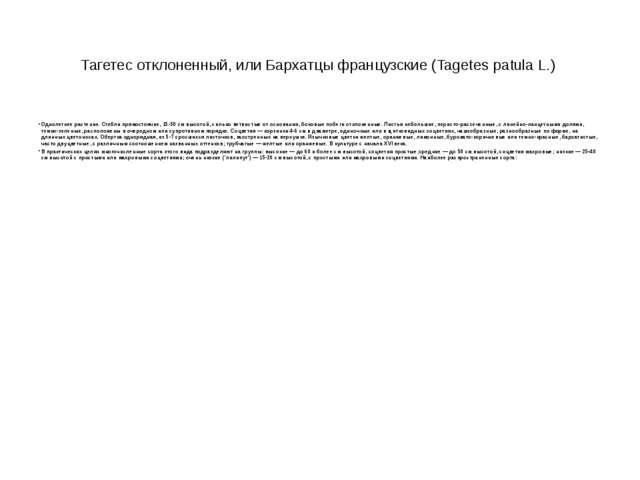 Тагетес отклоненный, или Бархатцы французские (Tagetes patula L.) Однолетнее...