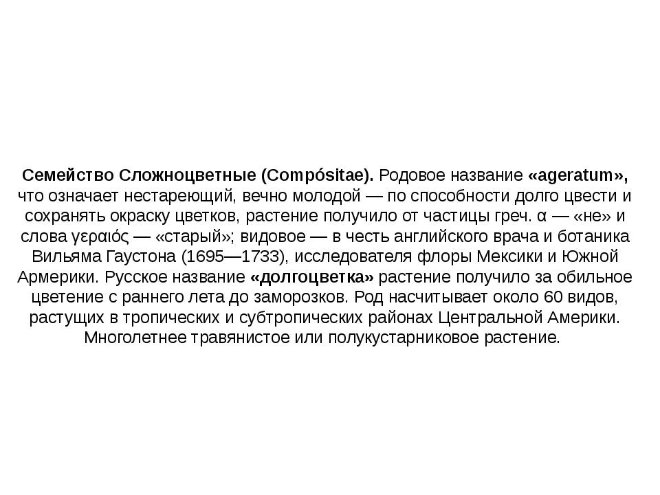 Семейство Сложноцветные (Compósitae). Родовое название «ageratum», что означа...
