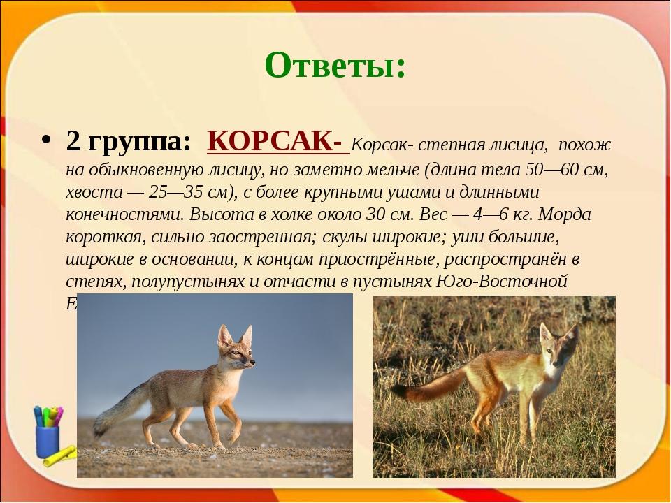 Ответы: 2 группа: КОРСАК- Корсак- степная лисица, похож на обыкновенную лисиц...