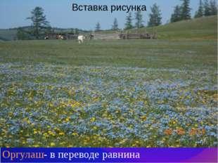 Оргулаш- в переводе равнина
