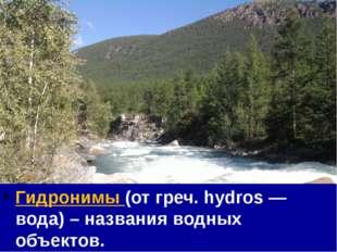 Гидронимы (от греч. hydros — вода) – названия водных объектов.