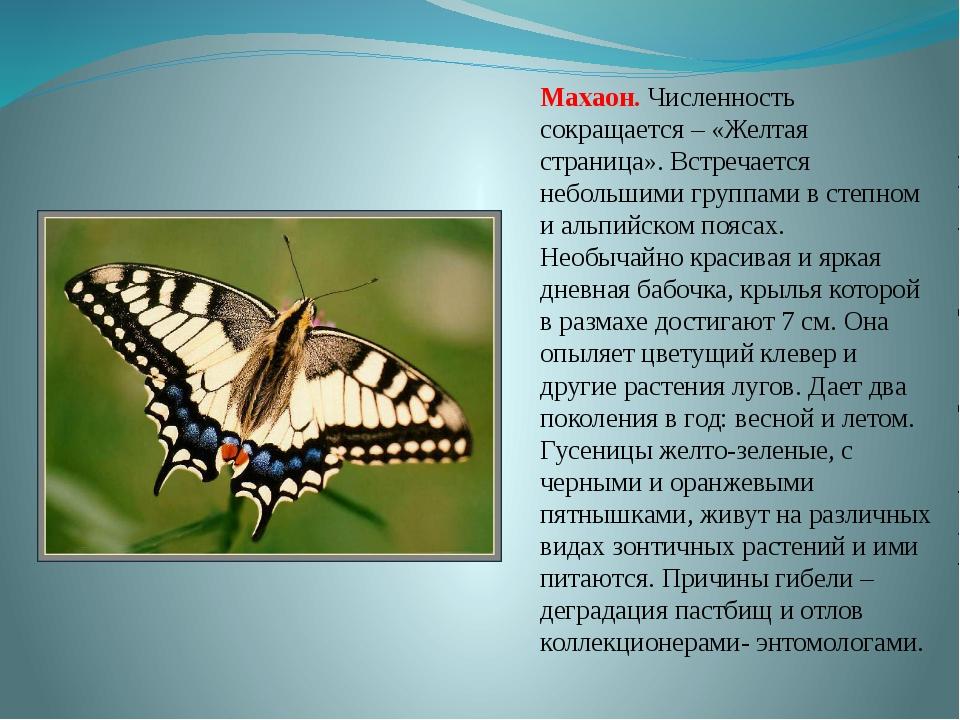 Желтые Страницы Башкортостана 2016 Официальный