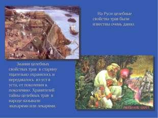 На Руси целебные свойства трав были известны очень давно. Знания целебных сво