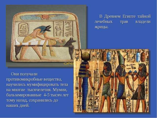 В Древнем Египте тайной лечебных трав владели жрицы. Они получали противомикр...