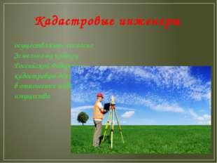 Кадастровые инженеры осуществляют, согласно Земельному кодексу Российской Фед