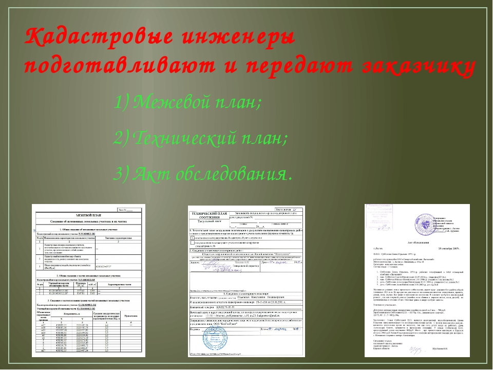 Кадастровые инженеры подготавливают и передают заказчику 1) Межевой план; 2)...
