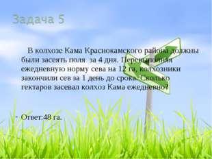 В колхозе Кама Краснокамского района должны были засеять поля за 4 дня. Пере