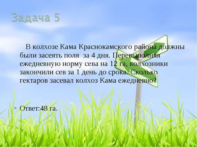 В колхозе Кама Краснокамского района должны были засеять поля за 4 дня. Пере...