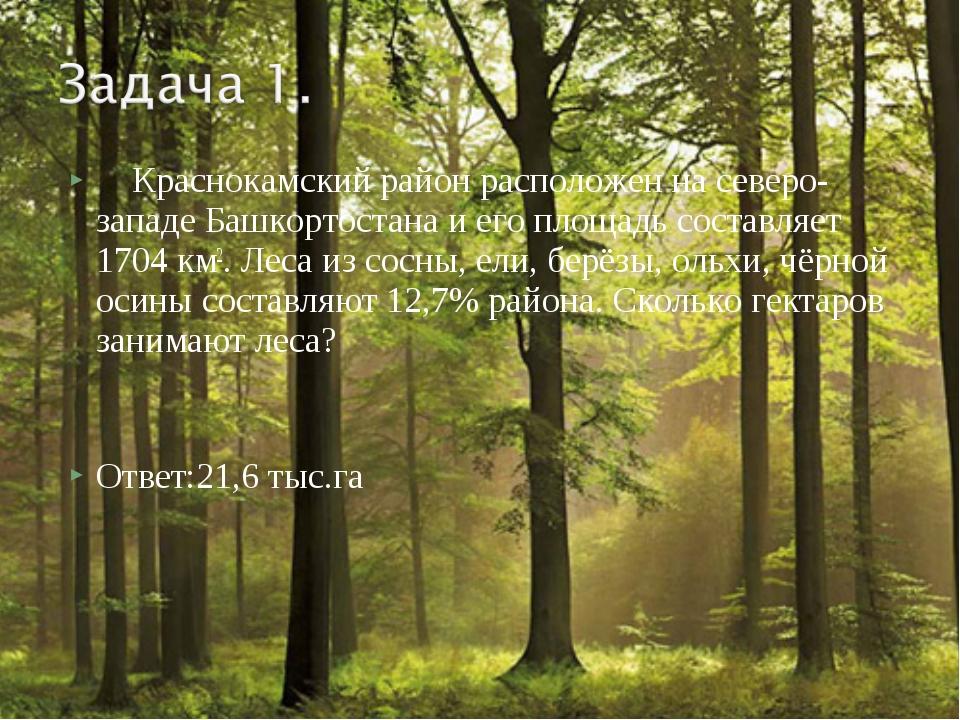 Краснокамский район расположен на северо-западе Башкортостана и его площадь...