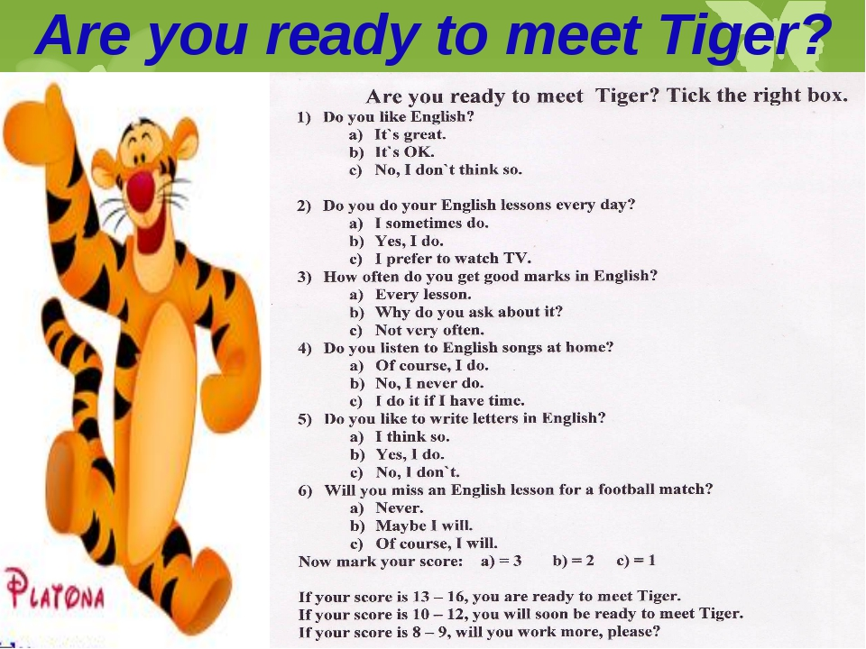 Are you ready to meet Tiger?
