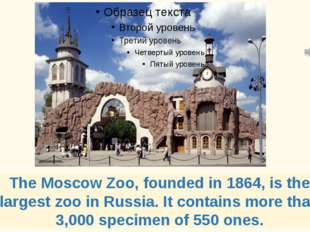 The Moscow Zoo, founded in 1864, is the largest zoo in Russia. It contains mo