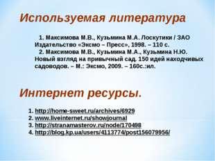 1. Максимова М.В., Кузьмина М.А. Лоскутики / ЗАО Издательство «Эксмо – Пресс