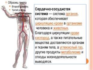 Сердечно-сосудистая система— системаорганов, которая обеспечиваетциркуляци