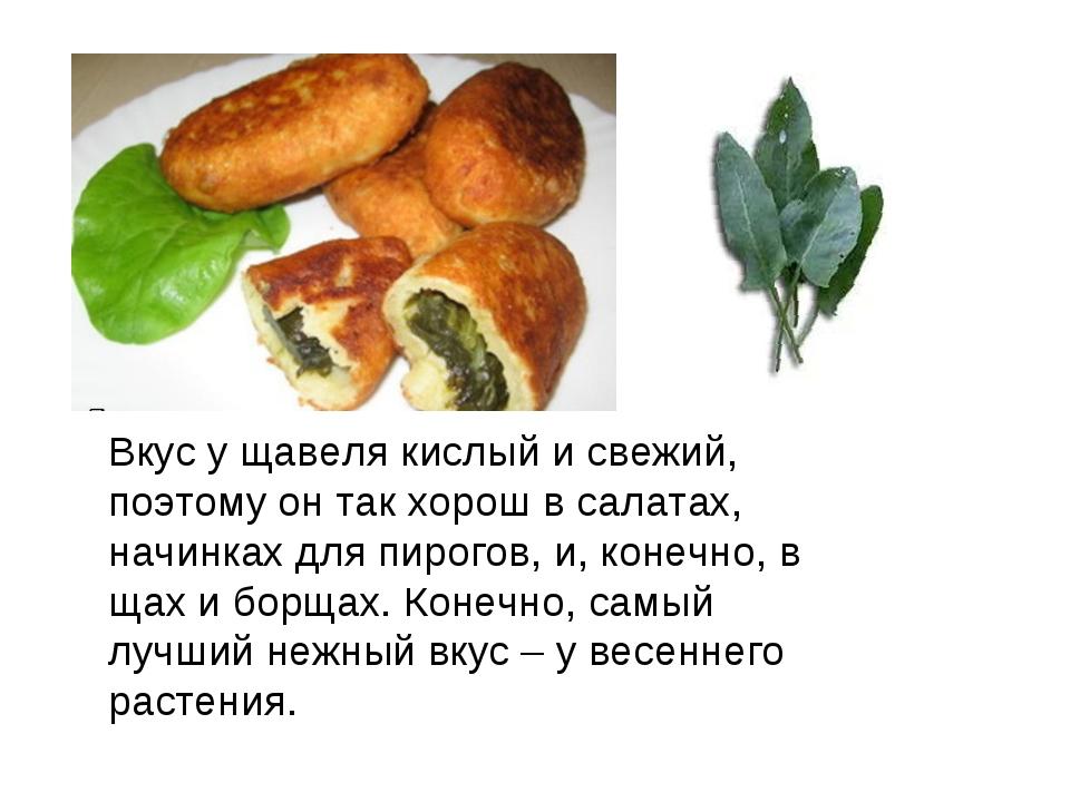 Вкус у щавеля кислый и свежий, поэтому он так хорош в салатах, начинках для п...