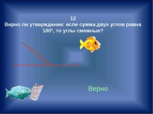 12 Верно ли утверждение: если сумма двух углов равна 180°, то углы смежные? В