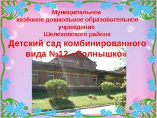 Муниципальное казённое дошкольное образовательное учреждение Шелеховского ра