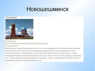 Новошешминск