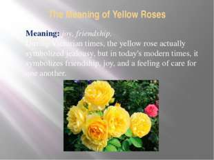 The Meaning of Yellow Roses Meaning: joy, friendship. During Victorian times,
