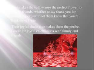 This makes the yellow rose the perfect flower to give to friends, whether to