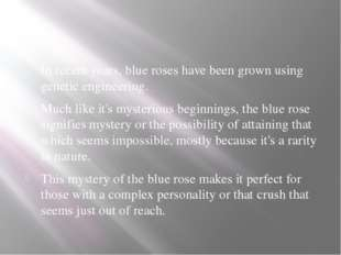 In recent years, blue roses have been grown using genetic engineering. Much