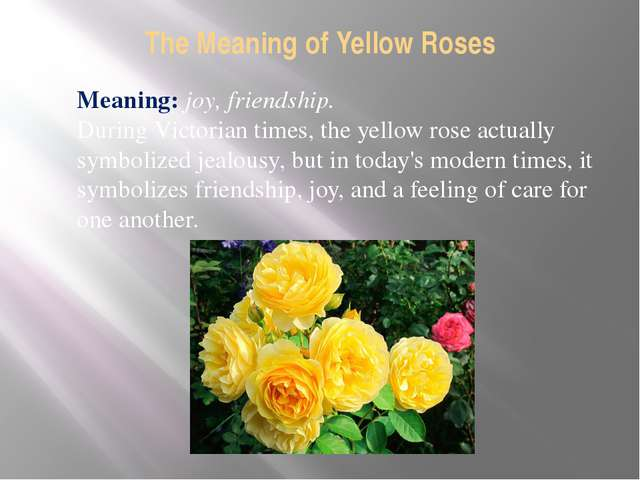 The Meaning of Yellow Roses Meaning: joy, friendship. During Victorian times,...