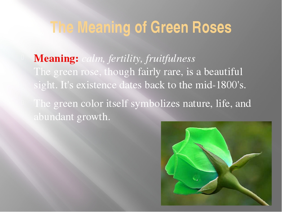 The Meaning of Green Roses Meaning: calm, fertility, fruitfulness The green r...