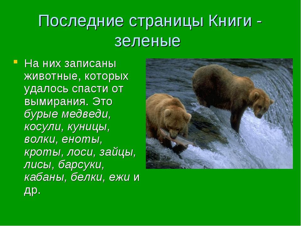 Последние страницы Книги - зеленые На них записаны животные, которых удалось...