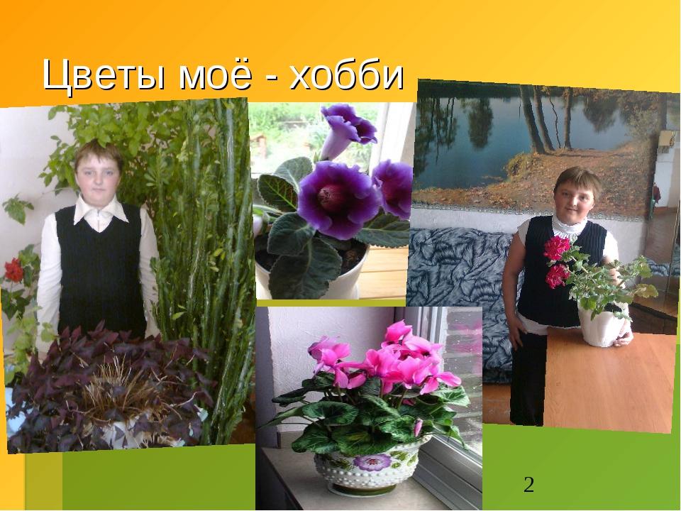 Цветы моё - хобби
