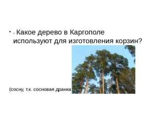 - Какое дерево в Каргополе используют для изготовления корзин? (сосну, т.к.