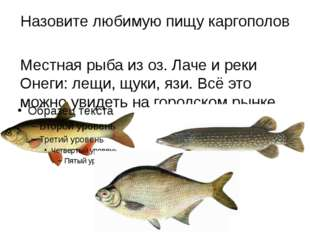 Назовите любимую пищу каргополов Местная рыба из оз. Лаче и реки Онеги: лещи,