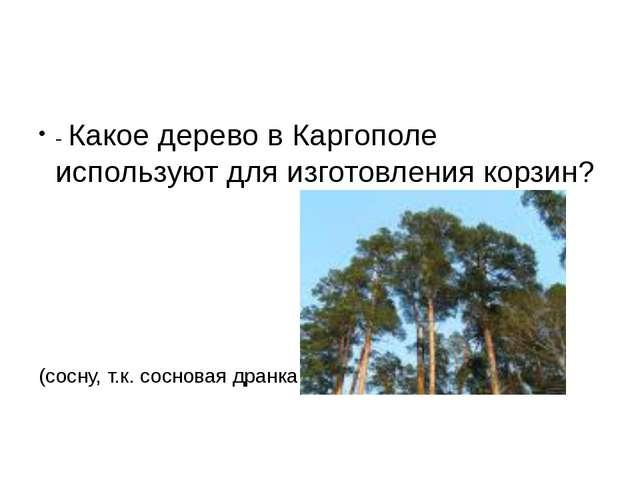 - Какое дерево в Каргополе используют для изготовления корзин? (сосну, т.к....